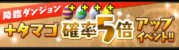 murakore6